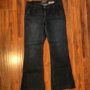 Gap 1969 Bootcut Jean